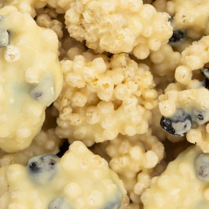 Yoghurt crispy blueberry rots
